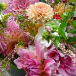 Peachy pink hues of dahlias; the stars of late summer and fall.